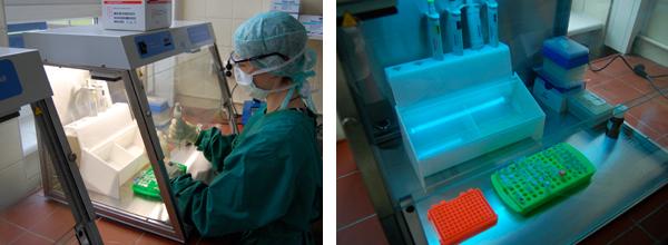 aDNA Laboratory