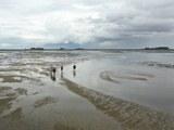 Wadden Sea 2