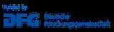 dfg logo schriftzug blau foerderung en 4c