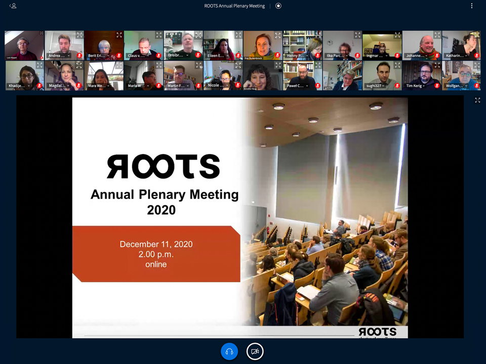 ROOTS Plenary Meeting