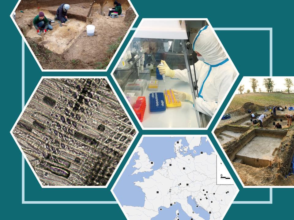 ROOTS Interdisciplinary Projects