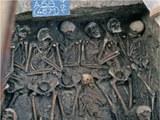 103 grabung skelette 4zu3 960px