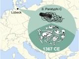 103 map 4zu3 960pc